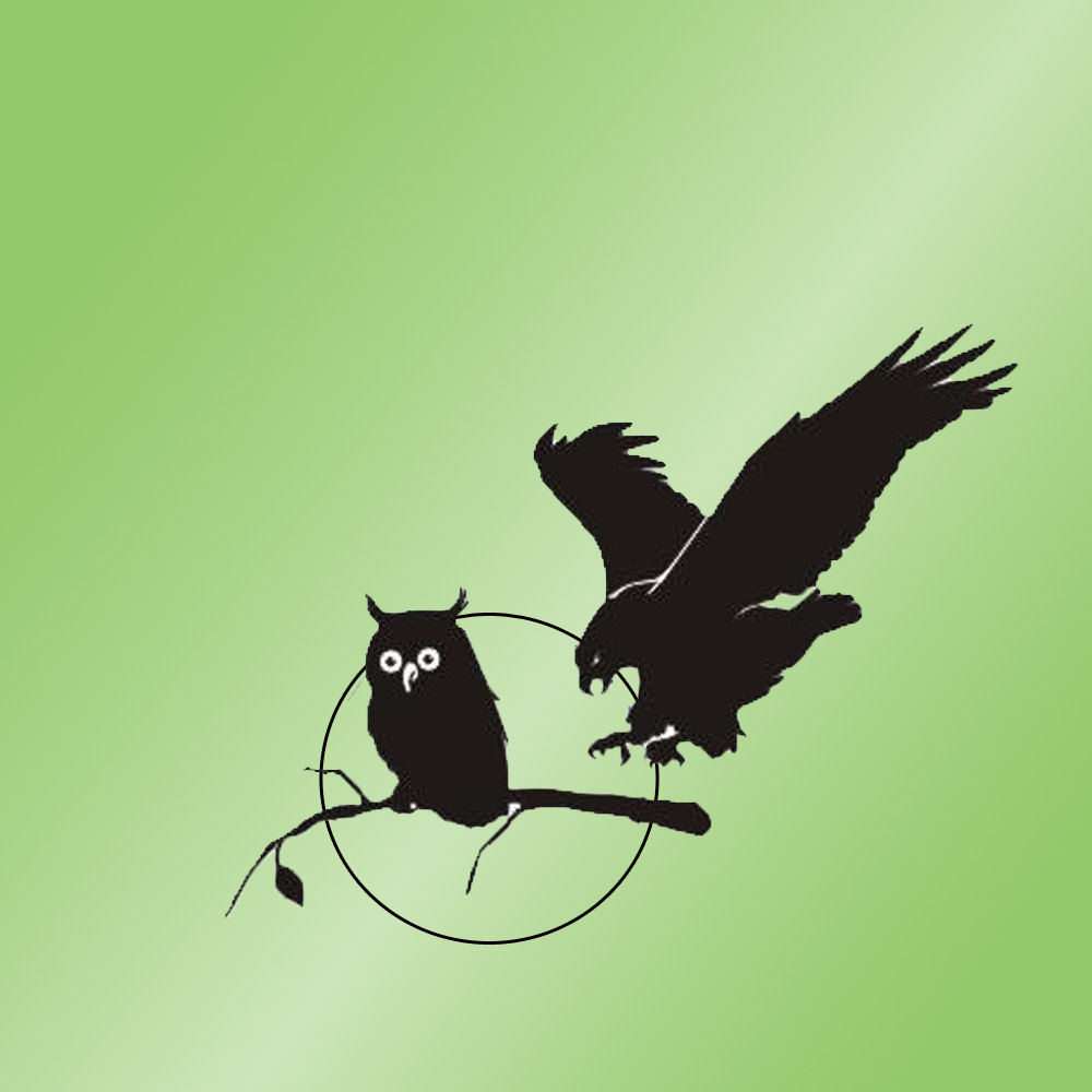 Logo Greifvogelwarte Oberlausitz